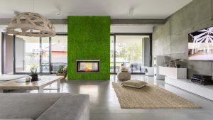 pareti con licheni