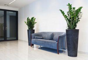 Come scegliere i vasi per piante officina del verde verona for Vasi moderni da interno