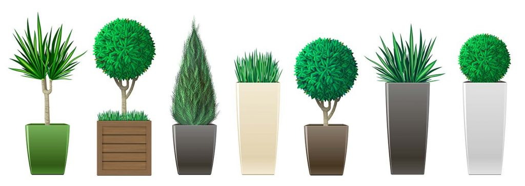 vasi per piante verona