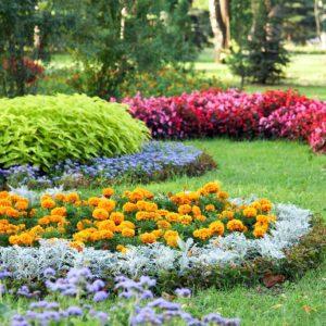 fioritura stagionale
