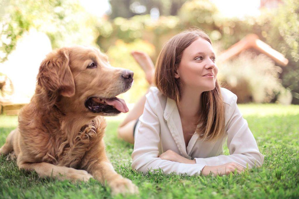 Un giardino a prova di cane