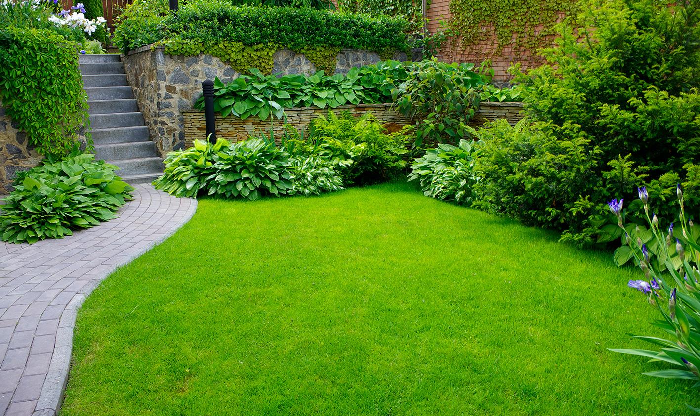 Pianifica Il Progettare Giardini Immagine Di Giardino Decorazione