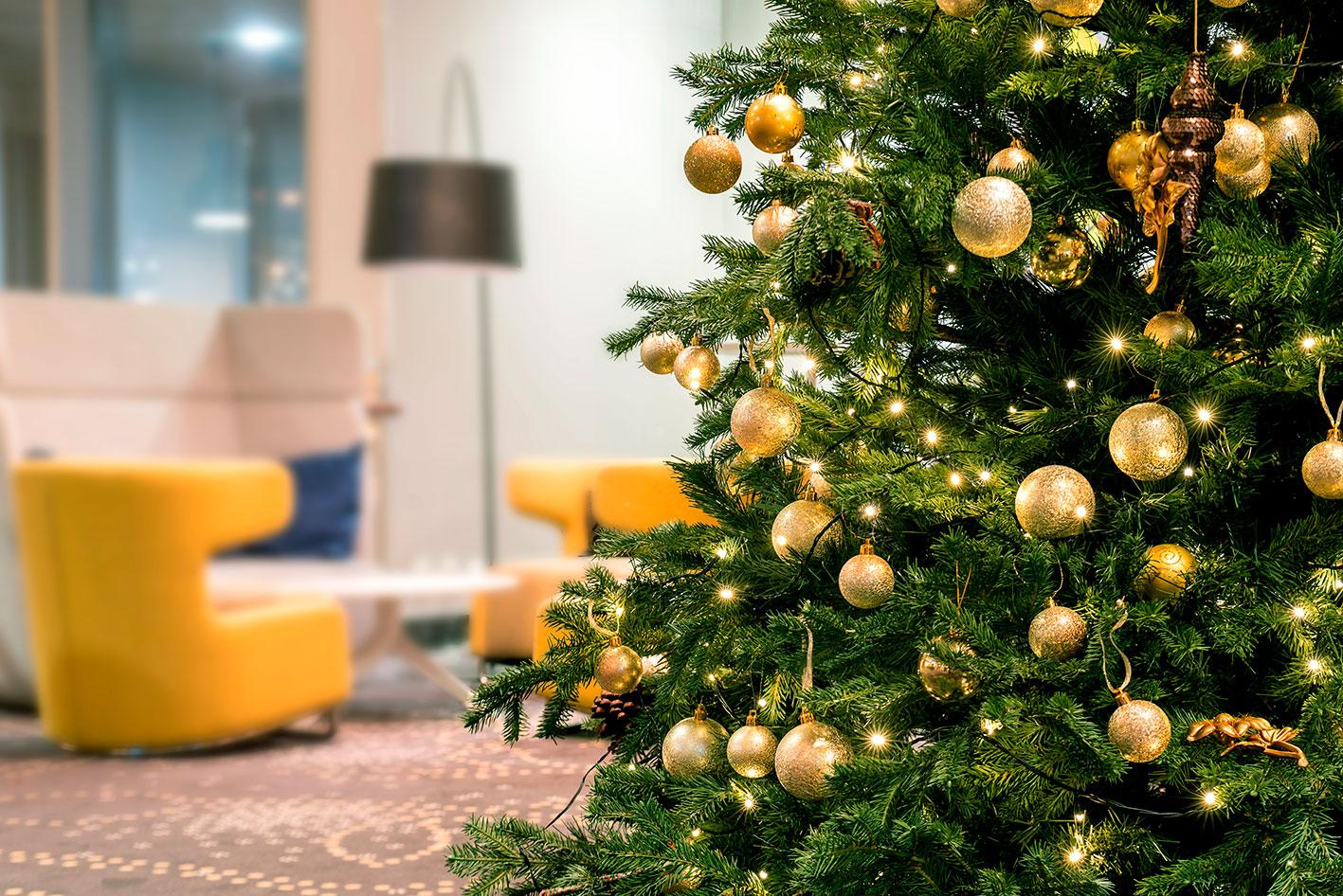 Immagini Alberi Di Natale.Albero Di Natale Vero Quale Tipologia Scegliere Officina Del Verde
